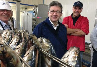 J-L Melenchon arrête la politique pour reprendre la poissonnerie de ses parents